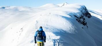 Øystein og venene reiste til topps på den finaste skidagen i år