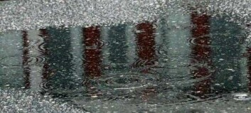 Slik blir veret dei neste dagane: – Det vil regne godt