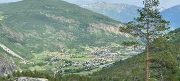 Koronatilfelle i Luster - nærkontakt sit i karantene