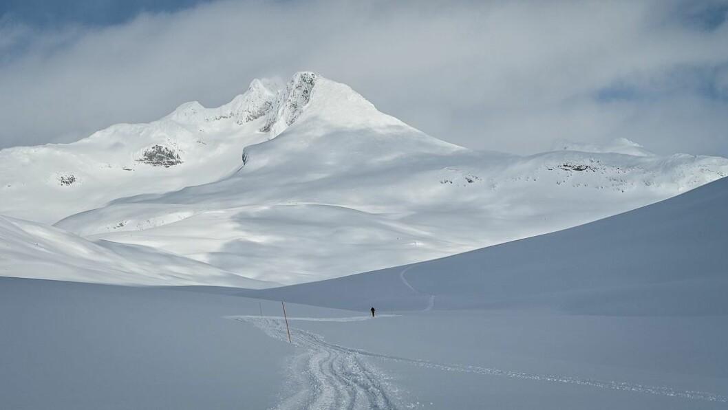 PÅSKE: Grunna varierande snømengder har løypene blitt noko annleis i år.