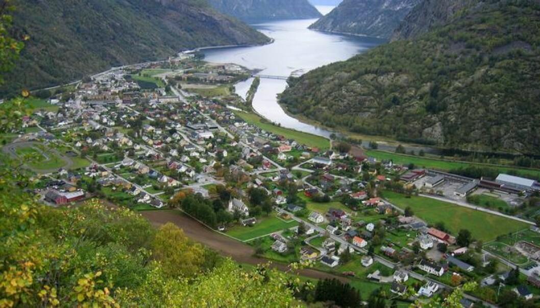 LÆRDAL: Dei to smittetilfella har ikkje samanheng med utbrotet i Årdal.