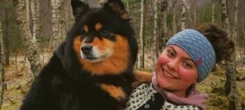No skal Hedda (17) jobbe mot vindkraft i fjella på nasjonalt plan: – Set pris på tilliten