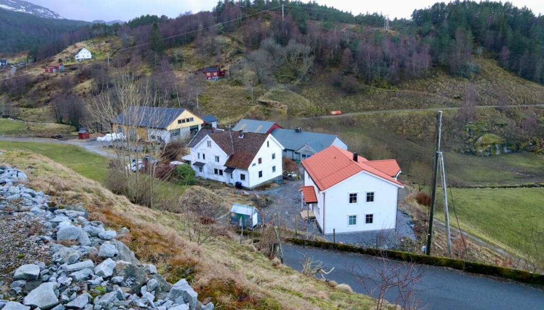 TYDELEG: – Vi i Vestland Bondelag er svært tydeleg på at filminga frå gardane ikkje er representativ for dei 2000 svinebøndene i næringa, skriv Anders Felde.
