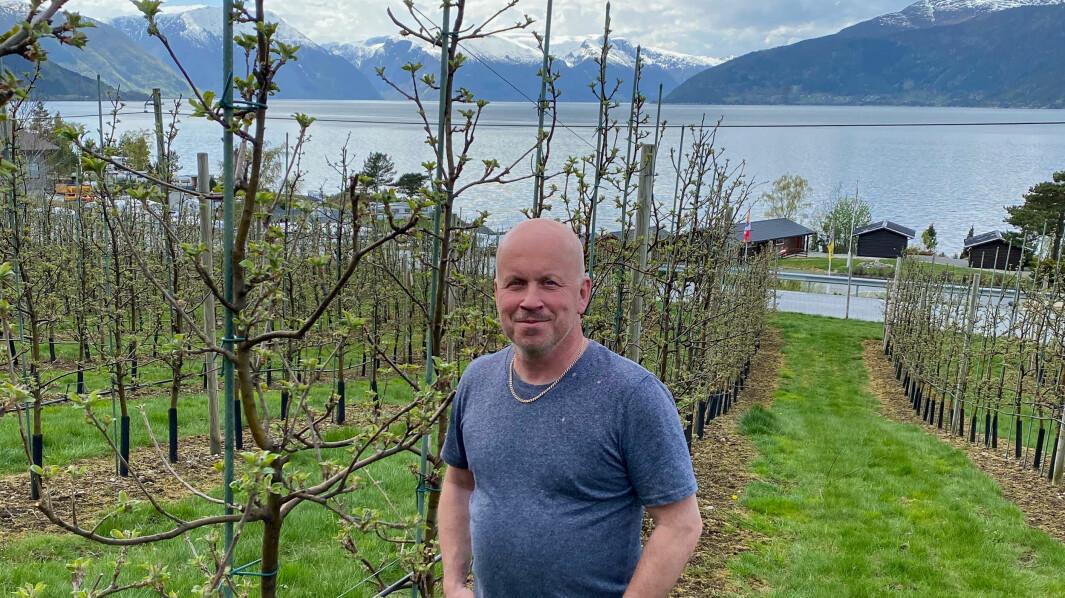 KONSEKVENSAR: Eivind Lidal fyktar at han i verste fall må klippe greienene sine før bæra modnar.