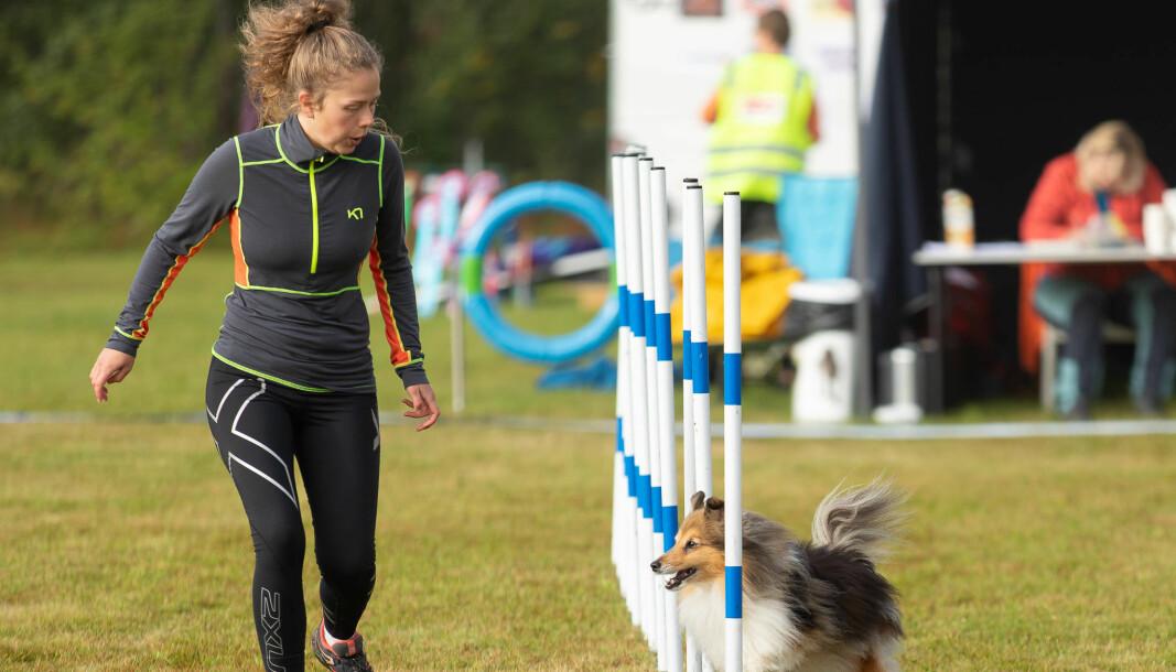 AGILITY: Hilde Kristin Krokengen driv med hundesporten Agility, her saman med hunden Snoopy.