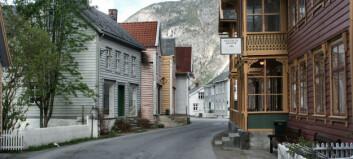Lærdal kommune har ledig stilling som vernepleiar