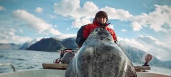 Fiskegutane Mons og Viljar gjer hobby til levebrød: – No har me overtenkt litt, så me føler kanskje det er skumlare enn det er