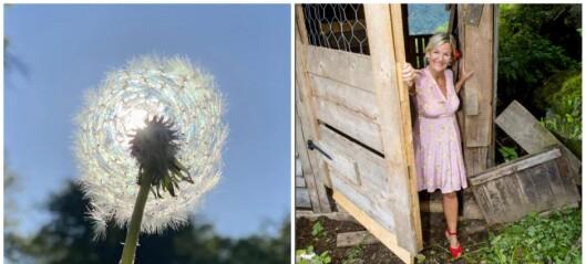 Blomsten og bia, eller er den versjonen for lengst forbi?