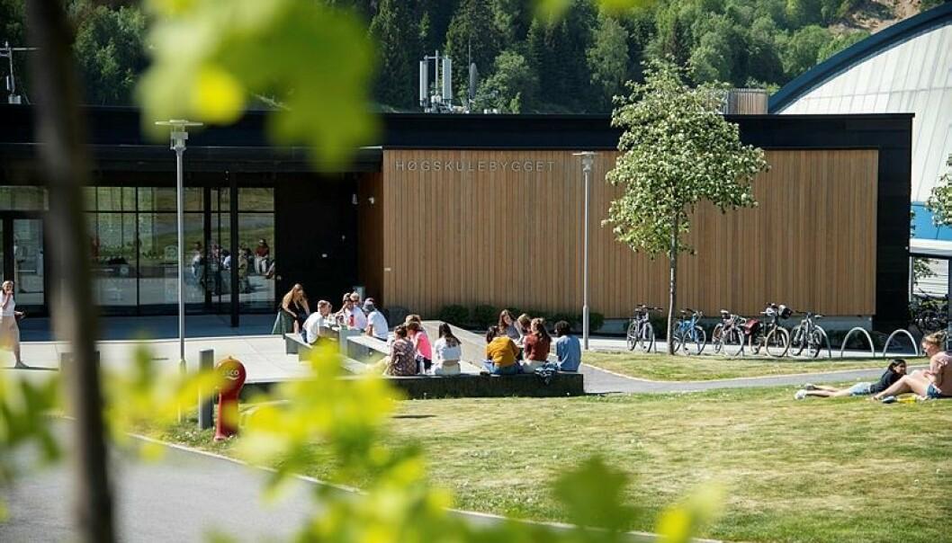 CAMPUS SOGNDAL: 197 fleire studentar har fått tilbod om studieplass enn i fjor.