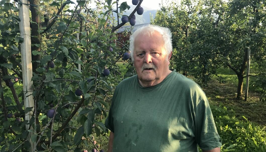 JUNGEL: Endre er oppvaksen i frukthagen i Gjerde, med all slags offentlege kontor i gangavstand frå tunet. Han er ikkje vand med den digitale jungelen.