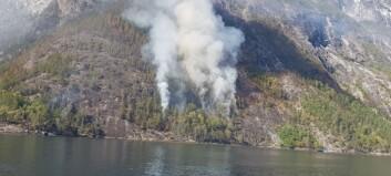 Skogbrannen i Aurland roar seg: – Ingen røyk måndag føremiddag