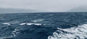 Kan kome vindkast på opp mot 30 m/s langs heile sognefjorden
