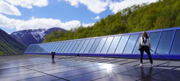 BlueTec Vest søkjer solcellemontørar