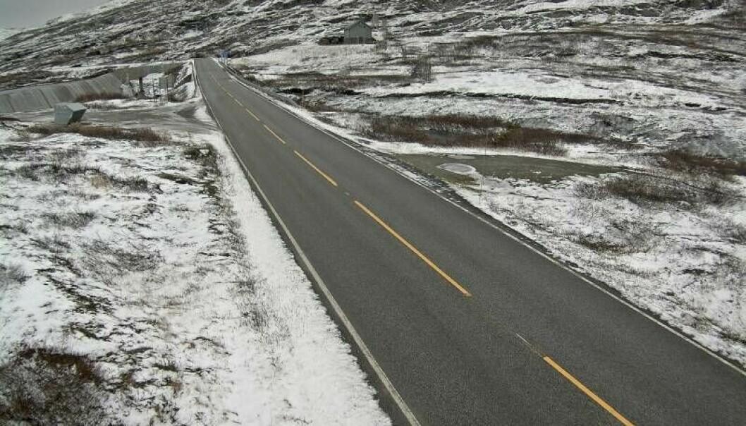 GLATT: På fjellet mellom Tyin og Årdal er det salta onsdag føremiddag.