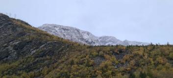 Gult farevarsel for snø: – Kan koma 40 centimeter
